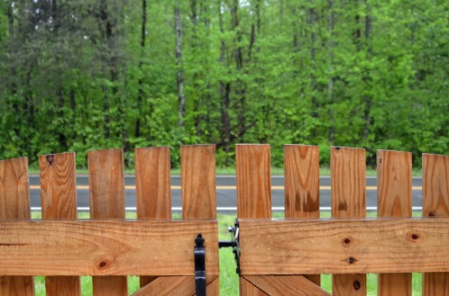 Rain makes things Green Spring NC 20170423_3270 Fence