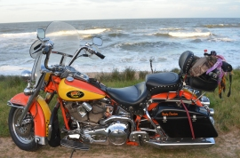 St Augustine Bryn Mawr Dogs Taco Flagler Beach 20171112_4914 Motorcycle 1994 Harley Davidson heritage Softail Shane